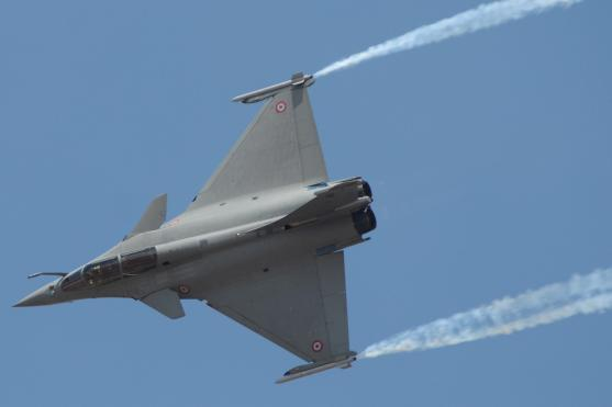 Minister awaits panel report to seal Rafale deal