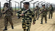 BSF plants four lakh saplings along border