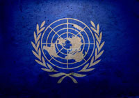 Majority in UN backs adding permanent members to Security Council: India