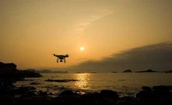 Drones can help find, count marine megafauna: Study