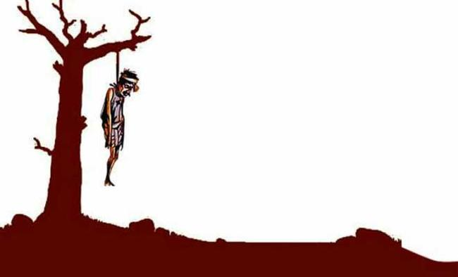 Why are India's farmers committing suicide?