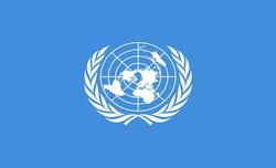UNSC calls for unhindered humanitarian access in Yemen