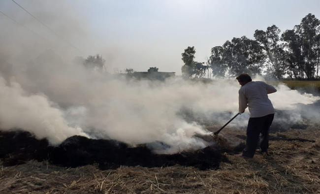 Air quality 'very severe' in Delhi due to stubble burning