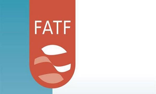 Pak submits progress report on 22 points to FATF joint group