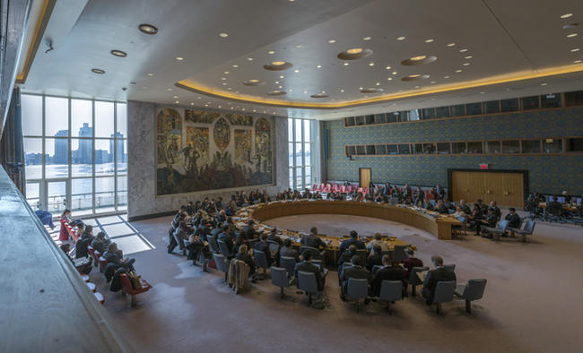 India pushes African right to permanent UNSC seat