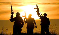 UN launches int'l hub on behavioural insights to counter terrorism