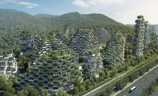 China to build 20,000 national forest villages